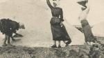 les femmes et la fleur de sel dans les marais salants. 95,.jpg